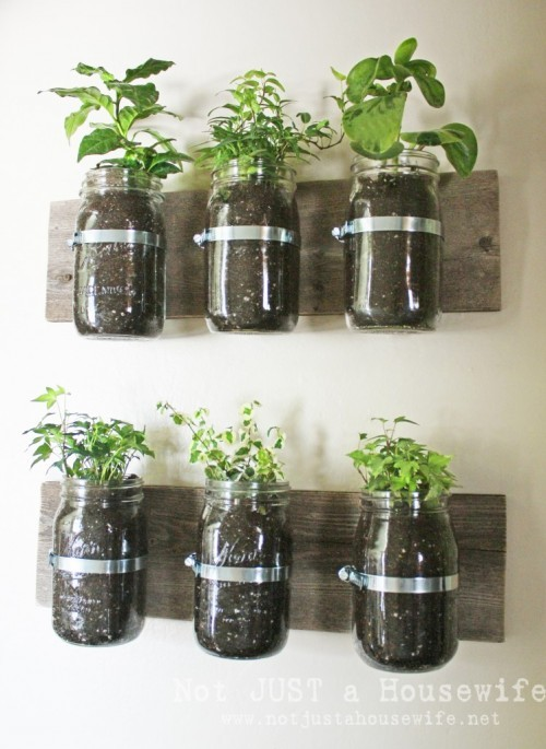 mason-jar-planter-board-747x1024-500x685