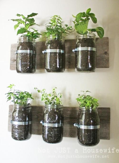 mason-jar-planter-board-747x1024-500x685