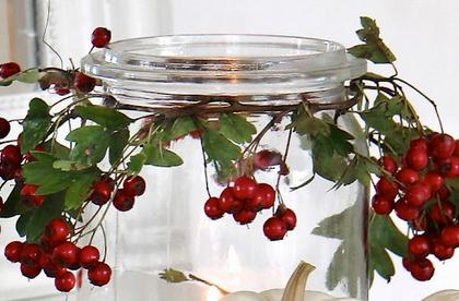 berryjar