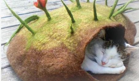 Schoenstrickende Katzenhöhle Filzen