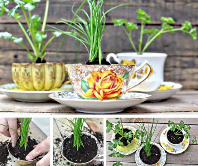 Upcycling: Teetassen als Blumentopf  - schoenstricken.de