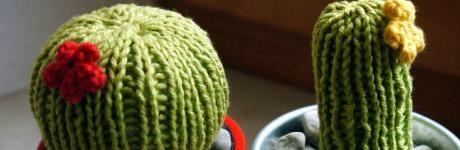 Strick Kaktus