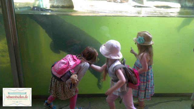 Mit Kindern im Berliner Zoo - schoenstricken.e