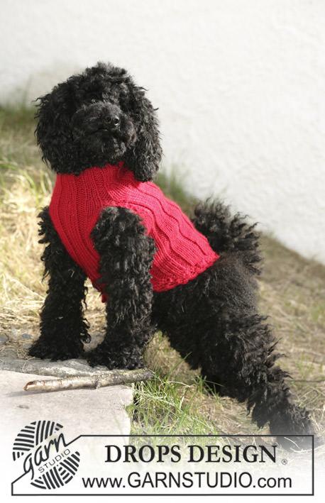Schoenstrickende Hundepullis Selber Stricken