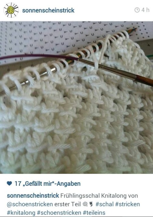 schoenstricken Knitalong 2014 a-1