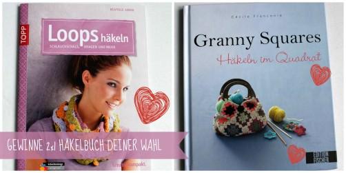 Häkelbuch gewinnen schoenstricken.de