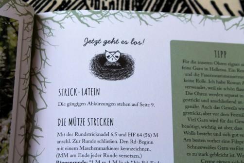 Strickbuch Vorstellung Elfenstrick Eule schoenstricken.de
