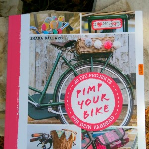 diy Buchvorstellung Pimp my Bike