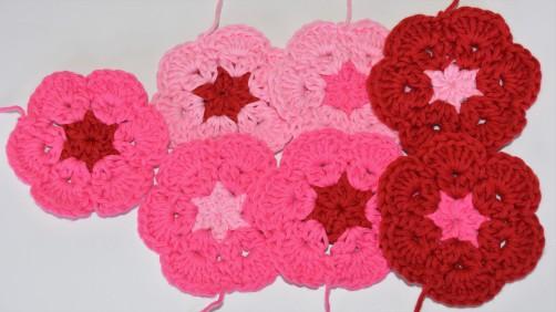 pinke Blumen 1